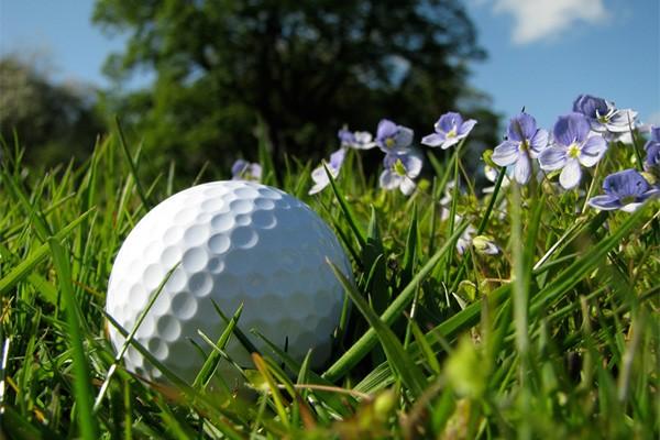 Golf Rbc montreal 2016